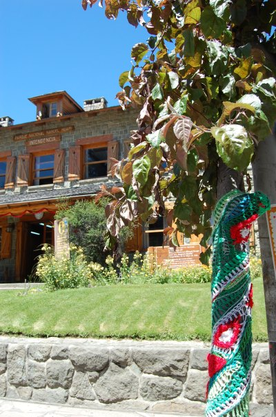 Office of the Nahuel Huapi National Park authority in Bariloche, with yarn-bombed tree in Christmas colours